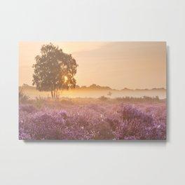 I - Fog over blooming heather near Hilversum, The Netherlands at sunrise Metal Print