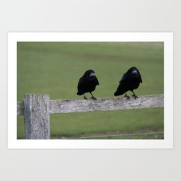 Just Two Birds  Art Print