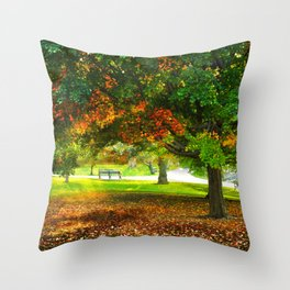 Changing colors of fall. Throw Pillow