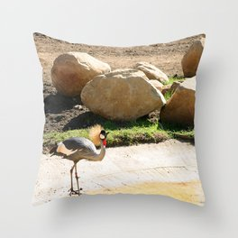 East African Crowned Crane Throw Pillow