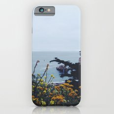 Floral Coast at Dusk iPhone 6s Slim Case