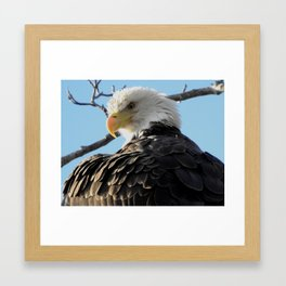 Amazing Beauty Framed Art Print