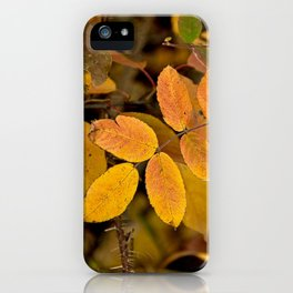 Yellow Fall Roses iPhone Case