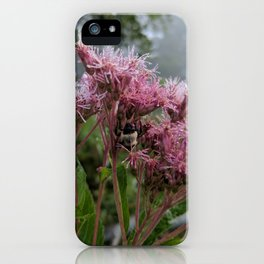 Shelter from the Storm iPhone Case