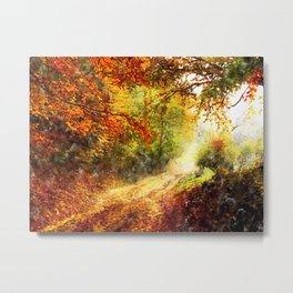 road, forest Metal Print