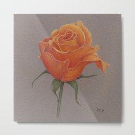 Orange Rose by Lars Furtwangler | Colored Pencil / Pastel Pencil | 2011 Metal Print