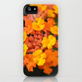 Orange and Yellow iPhone Case