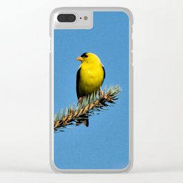 Bright Summer Morning Clear iPhone Case