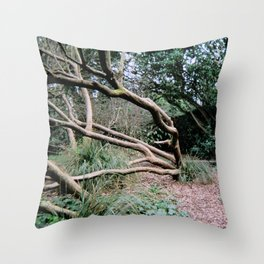 Trees of Finchley 3 Throw Pillow