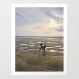 Salty Dog Art Print