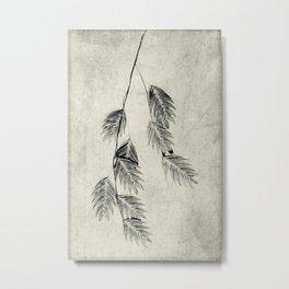 textured oat grass Metal Print