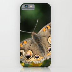 Common Buckeye Slim Case iPhone 6s