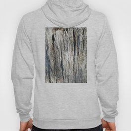 Old Stump Hoody