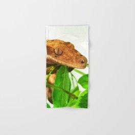 gecko Hand & Bath Towel