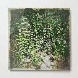 Waghai Botanical Gardens 98 Metal Print