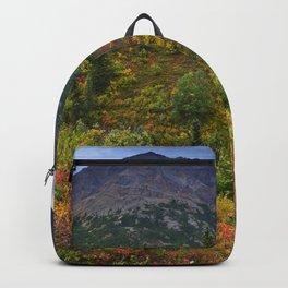 Denali Park in Autumn Backpack