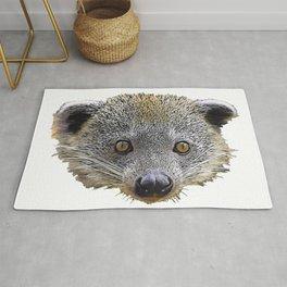 Binturong Bearcat Viverrid Face Grey Moustache Brown Sharp Rug