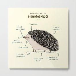 Anatomy of a Hedgehog Metal Print