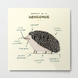 Anatomy of a Hedgehog Metal Print