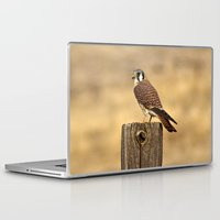 predator Laptop & iPad Skins featuring Predator by Ian Bevington