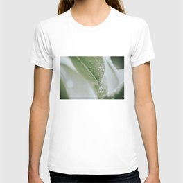 Leaf With Raindrop Photo | Close-up Nature Photography | Atmospheric Raindrop T-shirt