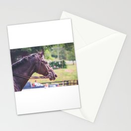 Black Horse Stationery Cards