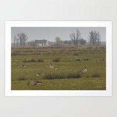 Wild geese Art Print