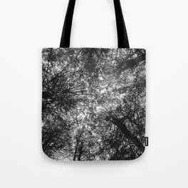 The Dark Forest Path Tote Bag