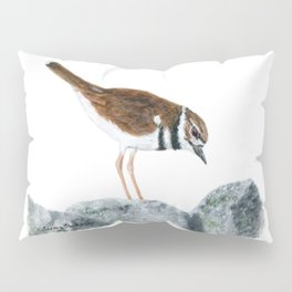Killdeer Art 2 by Teresa Thompson Pillow Sham