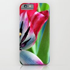 Pink and White Tulip Slim Case iPhone 6s