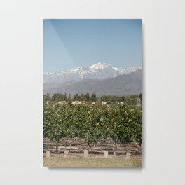 Mendoza Vineyard Metal Print