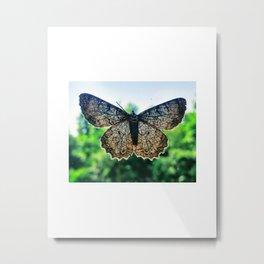 Moth Against Blue Sky Metal Print