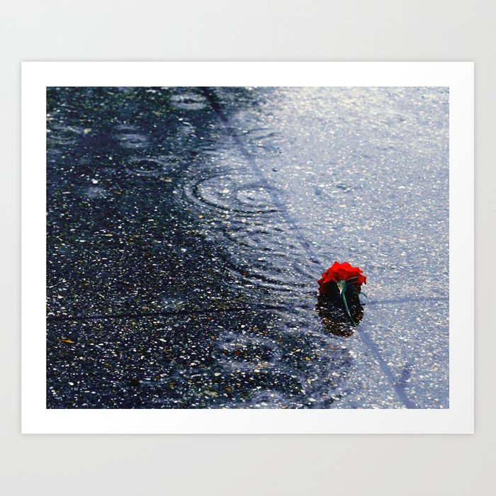 Dropped in the Rain Art Print