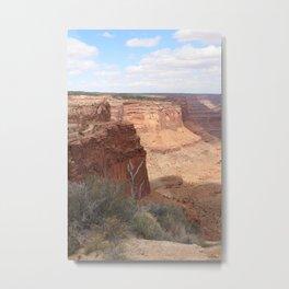 taylor canyon Metal Print