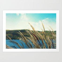 Lakeside Breeze Art Print