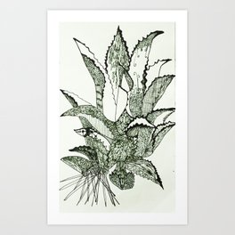 Agave, Kiss of Mezcal the Spirit of Mexico Art Print
