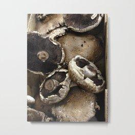 Giant Mushrooms Metal Print