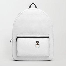 Cute Dachshund In Pocket Backpack
