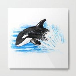 Baby Orca Playing Metal Print