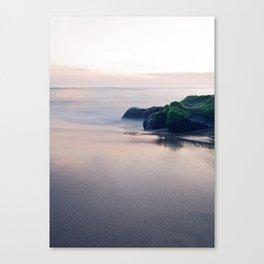 Ocean Take Me Canvas Print