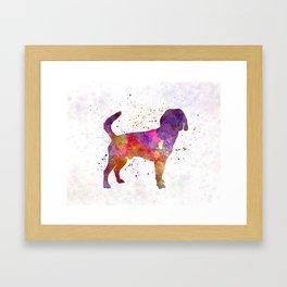 Beagle Harrier in watercolor Framed Art Print