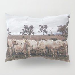 Moo Pillow Sham