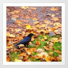Corbeau d'automne. Art Print