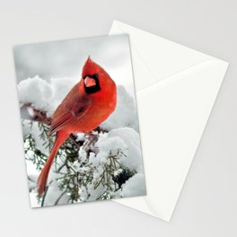 Cardinal on Snowy Branch #2 Stationery Cards