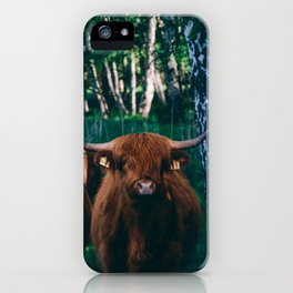 Highland Cattle iPhone Case