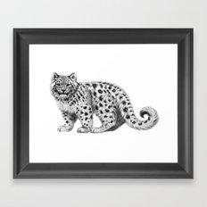 Snow Leopard cub g142 Framed Art Print