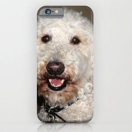 Jake The Labradoodle iPhone Case