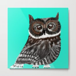 Big Eyed Owl With Aqua Background Metal Print