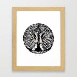 Round Owl Framed Art Print