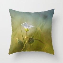Cerastium fontanum subsp. vulgare  Throw Pillow